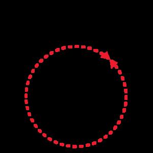 circonferenza anello